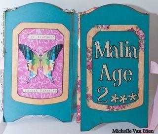 Fairyshadowboxbook-3